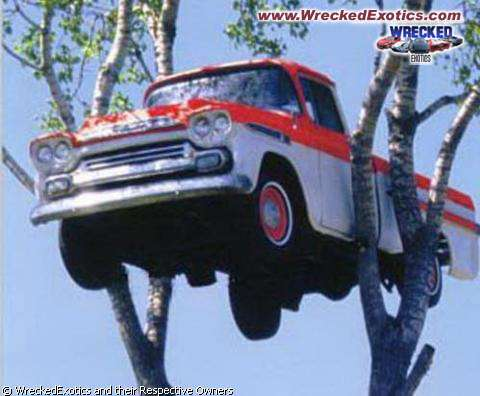 Truck up Tree